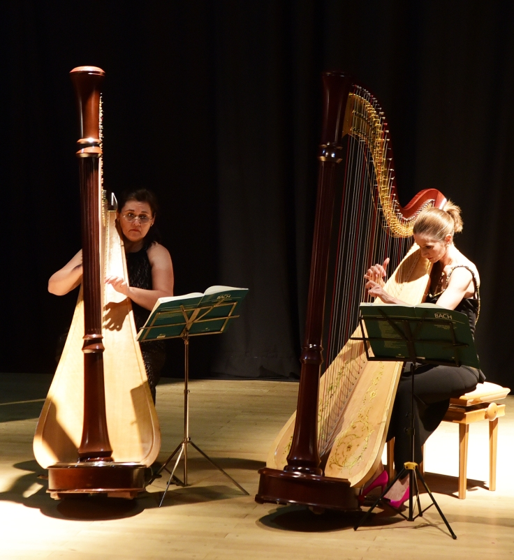 concierto de arpas (1).JPG